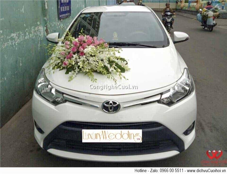 Cho thuê xe cưới - Toyota Vios